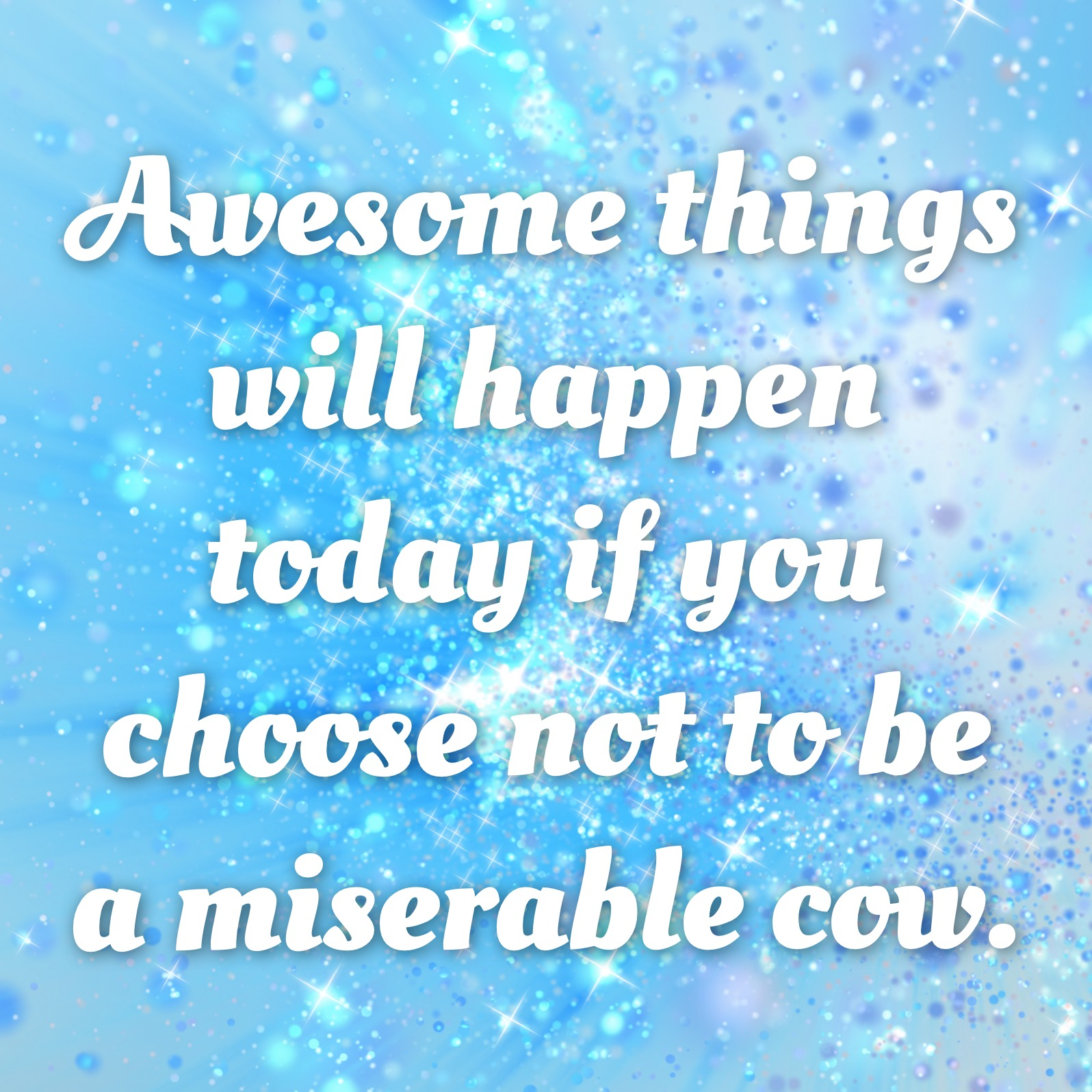 Don't be a miserable cow