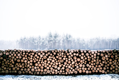 I Like Wood